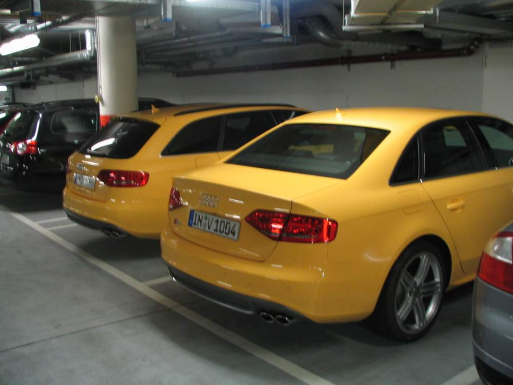 Show Me Your Yellow Rs4s And S4s
